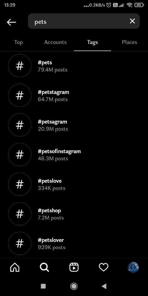Pets hashtags for Instagram